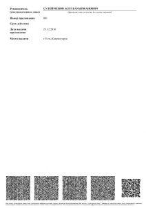 Report (1)_4